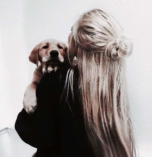 Dog Hair And Girl Image Hair Goals Blonde Hairstyle Messy Half Bun Instagram Pollyrogers Puppies Doggy Animals