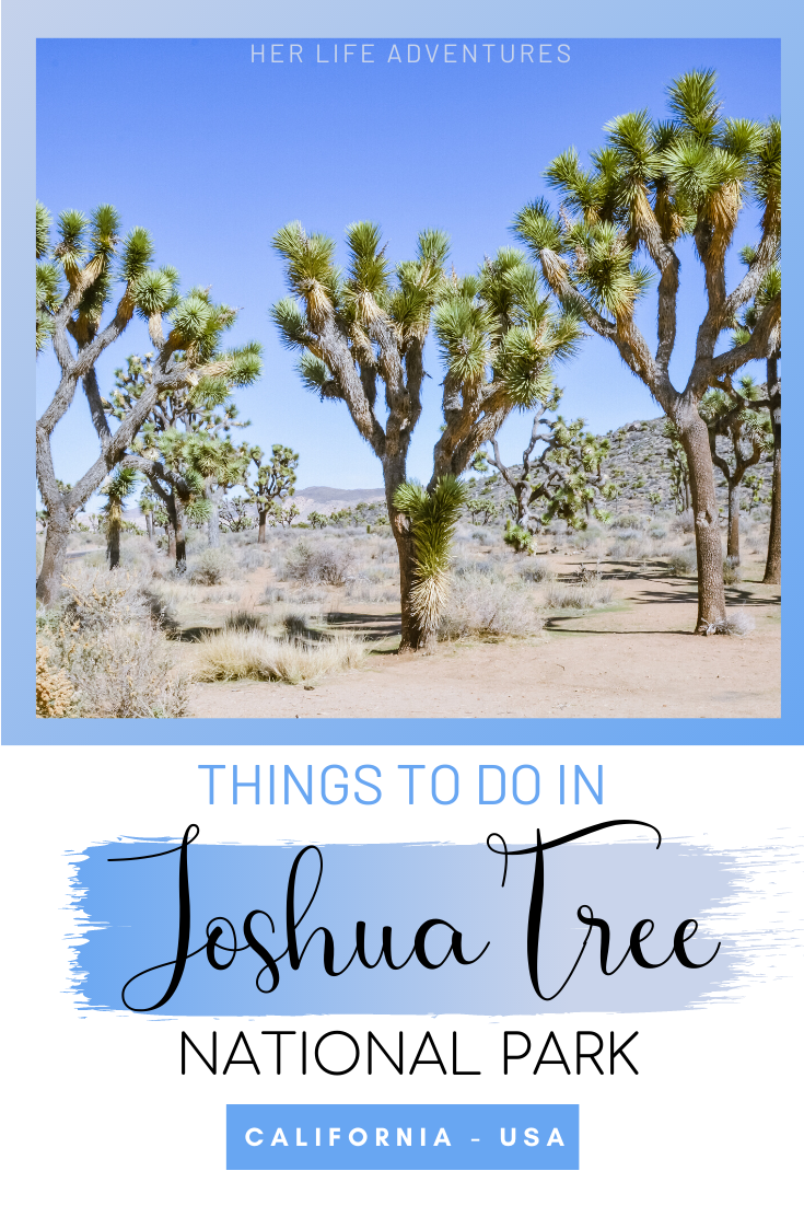Things To Do In Joshua Tree National Park California Travel Road Trips Joshua Tree National Park National Parks