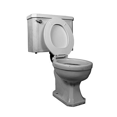 Leaving The Toilet Seat Up Bad Habit With Images Toilet