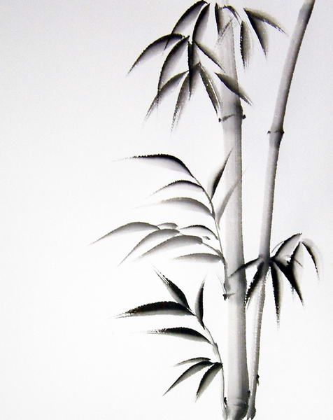 Japanese Bamboo Drawings Hand Painted Sumi Art With Images