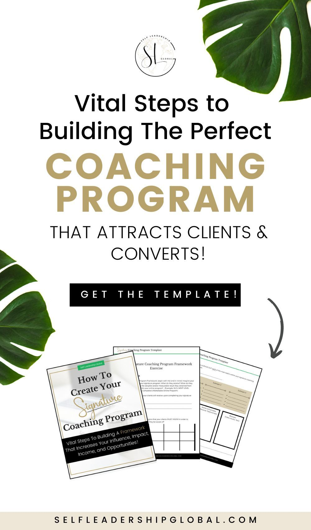 How Create A Signature Coaching Program That Sells + FREE