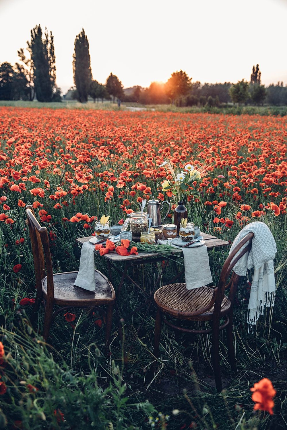 Photo of Gluten-free Poppyseed Granola – A Picnic in a field of poppies