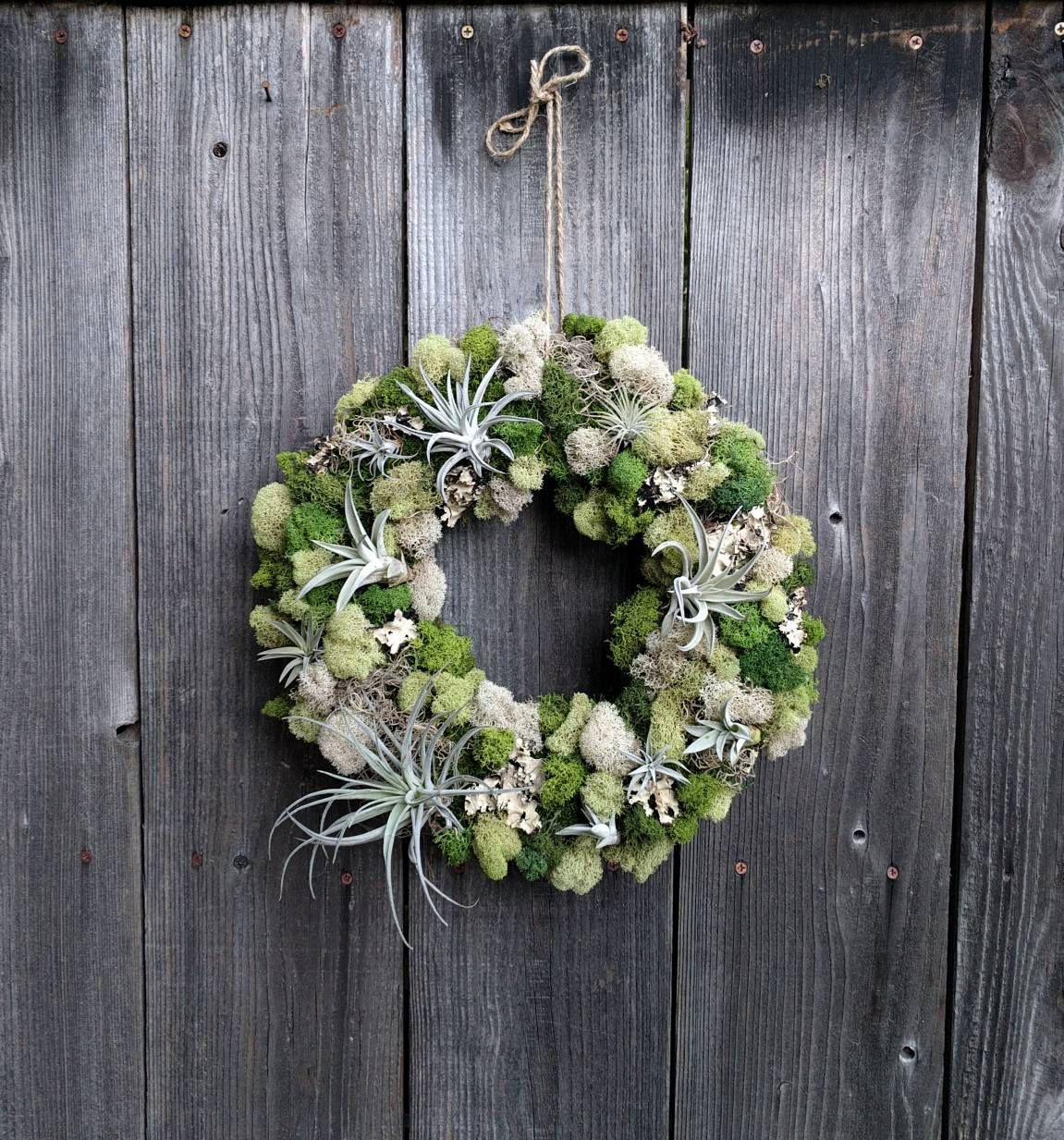 living air plant wreath with multiple air plants reindeer moss and