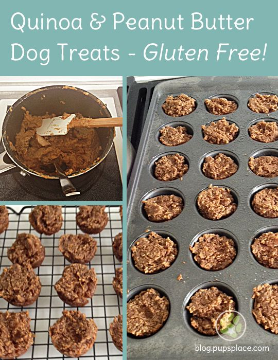 Gluten Free Dog Treats Pet Food Toys Dog Treats Dogs Homemade