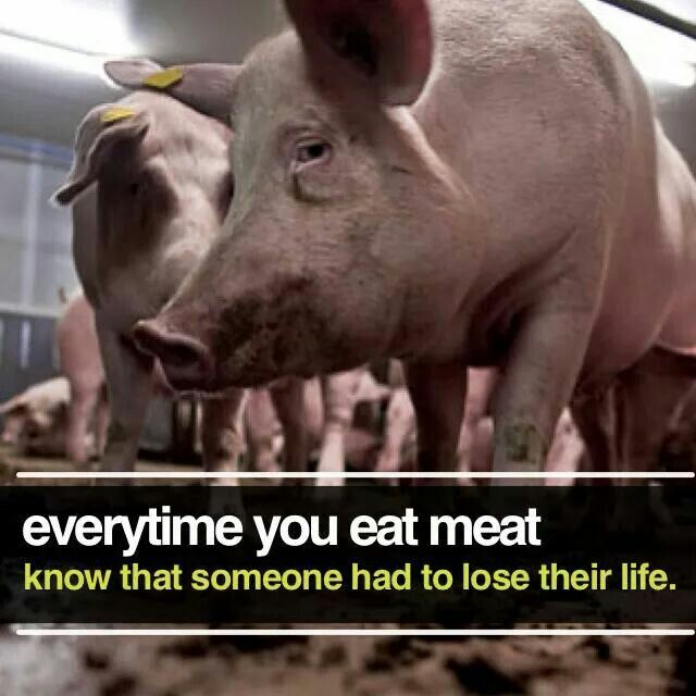 Pro Vegan Every Time You Eat Meat Know That Someone Had To Lose