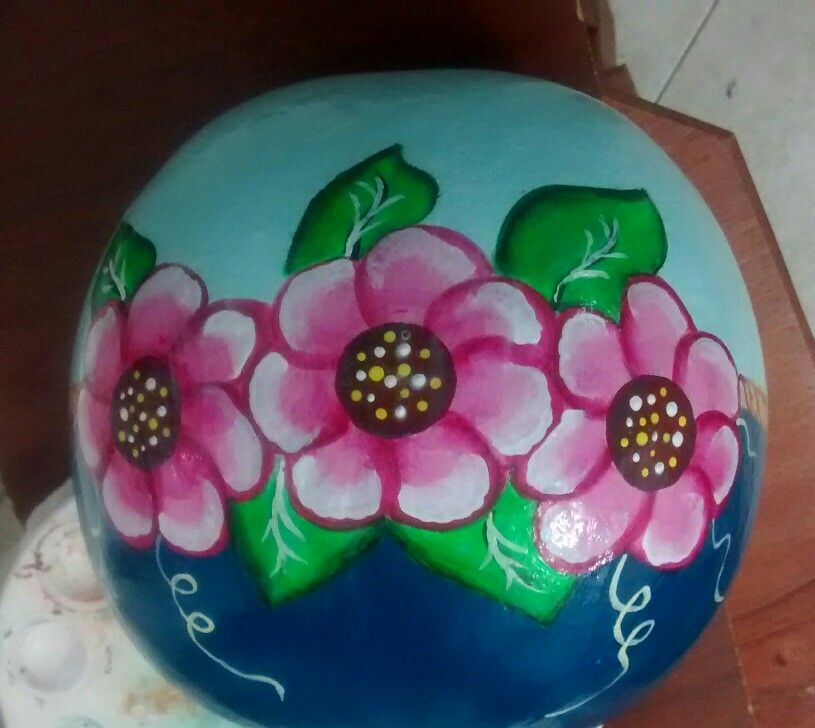 Tapara pintada