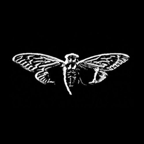 cicaca_3301_symbol_logo_emblem
