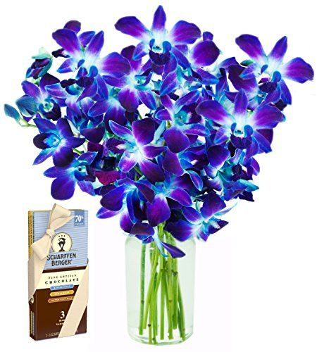 Blue Orchid Bouquet 10 Stems And Scharffen Berger Chocolate With Vase Blue Orchid Bouquet Blue Dendrobium Orchids Blue Orchids
