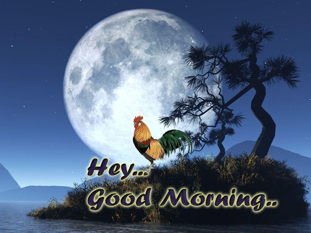 World Best Good Morning Wallpaper Images Good Nite Pinterest