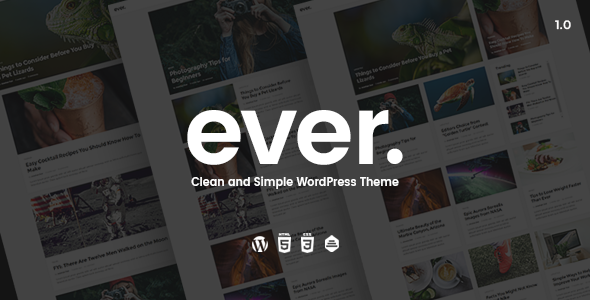 Ever v1.2.2 Clean and Simple WordPress Theme Simple