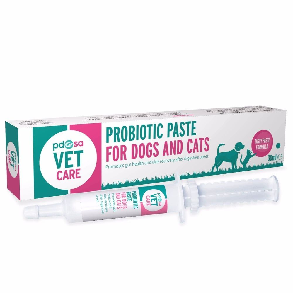 pdsa VET CARE Probiotic Paste for Cats Dogs Aids Recovery Gut & Digestive upset #PDSA