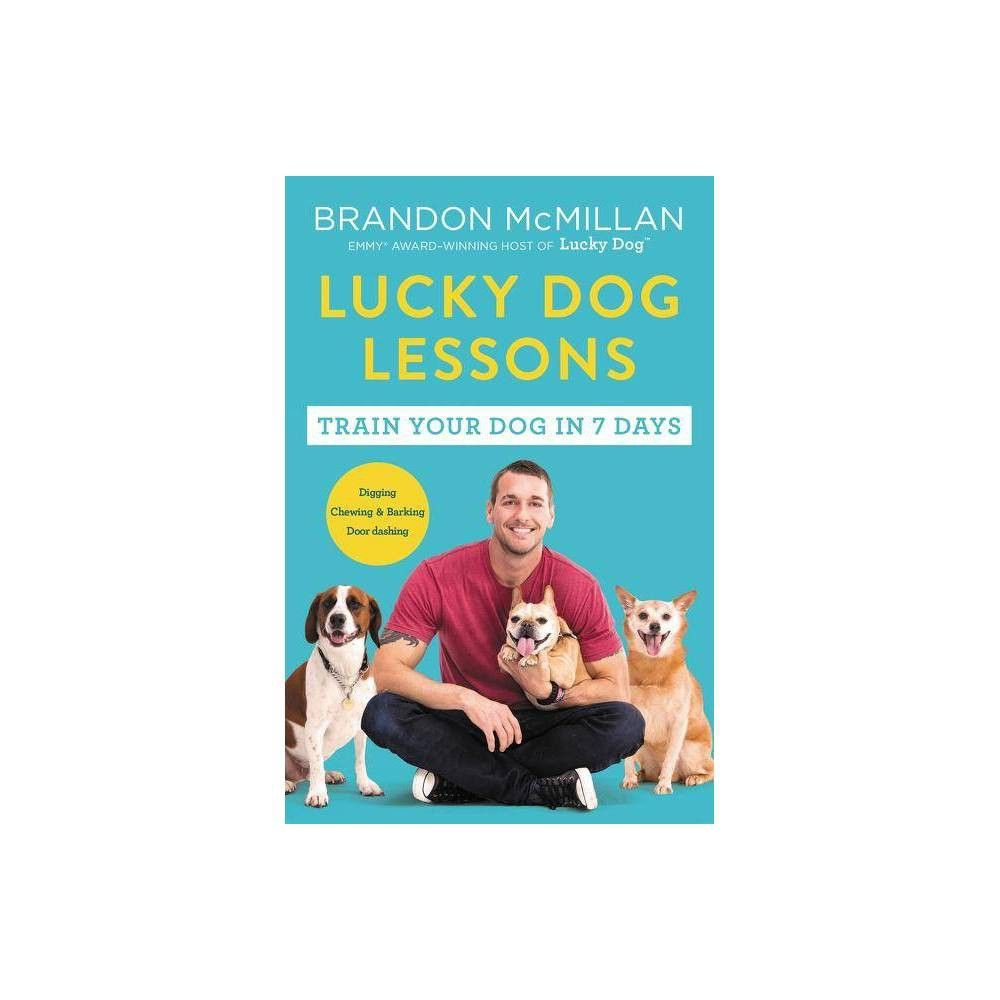 Lucky Dog Lessons By Brandon Mcmillan Paperback Lucky Dog