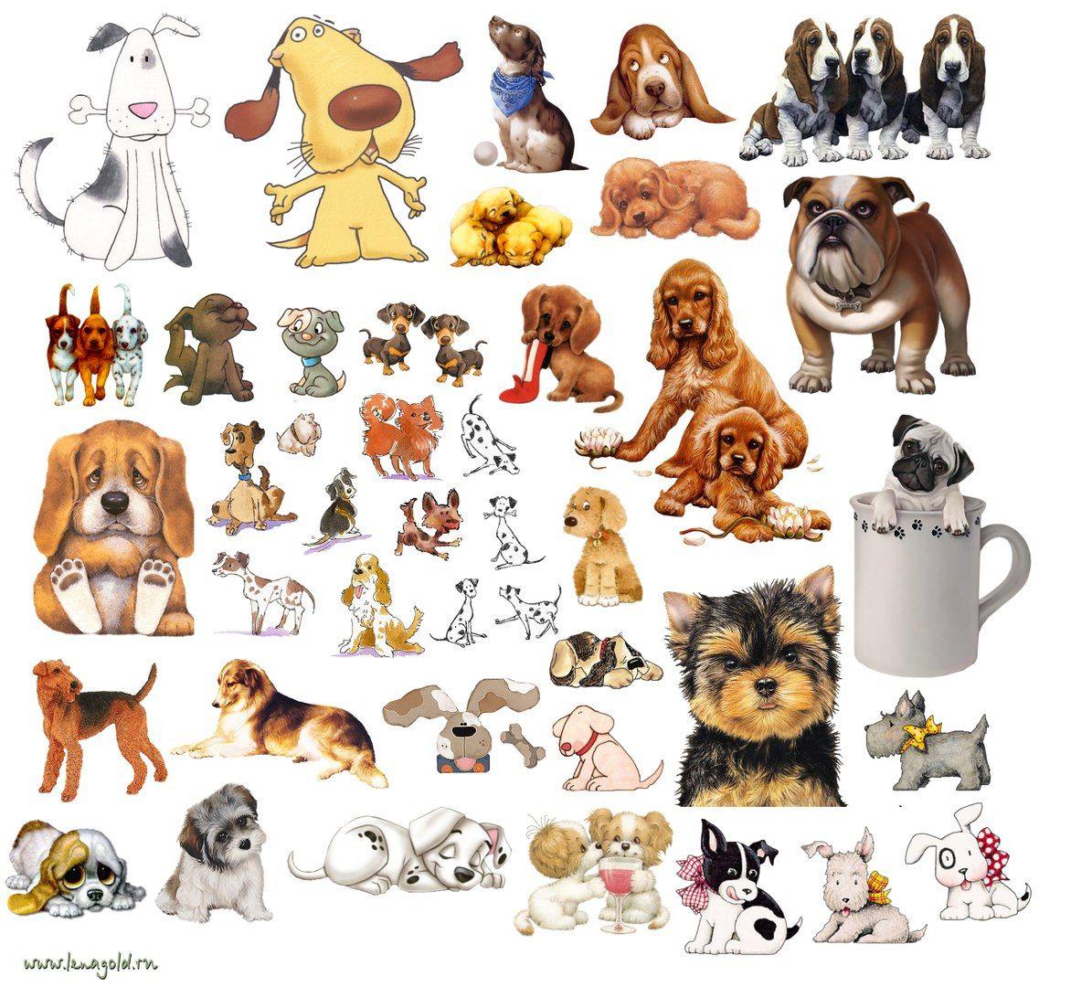 картинки для лд для распечатки цветные собаки