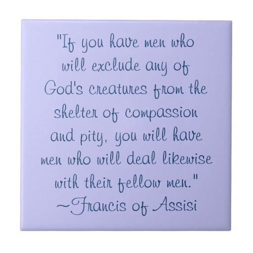 St Francis Of Assisi Quotes Amazing Stfrancis Of Assisi Quotes About Animals  St Francis Animals . Inspiration Design