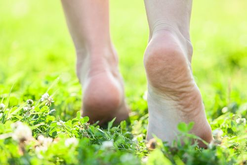 If you're a fan of flip-flops and going barefoot during the warm summer months, you may go into the fall season with damaged feet. Sun exposure, rough surfaces, and a general lack of protection can lead to dry, cracked heels, an increase in calluse ...