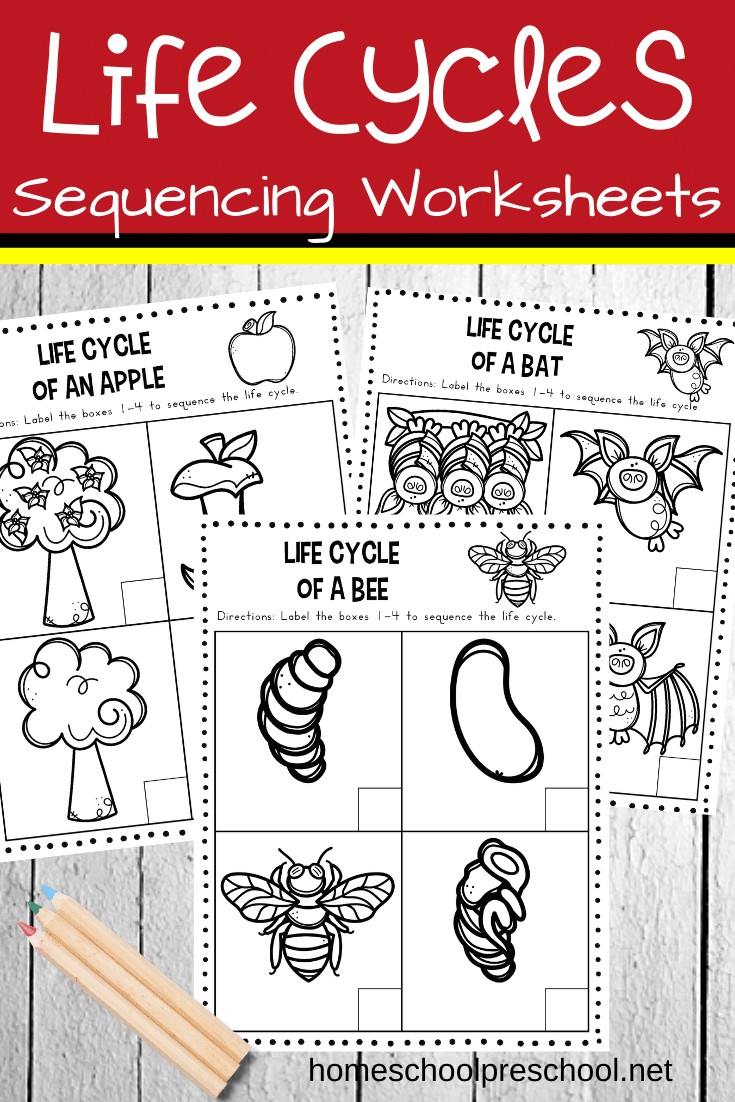 Free Life Cycle Sequencing Worksheets For Preschool Sequencing Worksheets Life Cycles Life Cycles Preschool [ 1102 x 735 Pixel ]