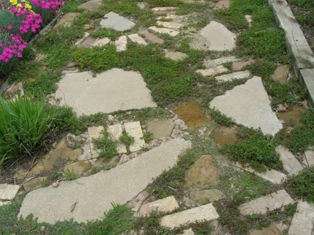 http://unquadratodigiardino.it/forum-di-giardinaggio/arredare-il-giardino-e-darsi-agli-acquisti/2349-bordure-fai-da-te-o-da-riciclo.html