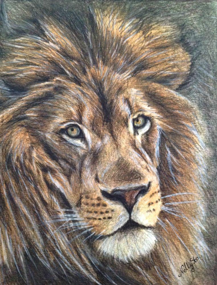DESSIN ORIGINAL   *  LION  *  chat, gatto, katze, cat, kitten