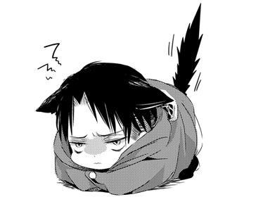 Cat Attack! - Neko!Levi x Reader - Modern!AU by demoticdreams on