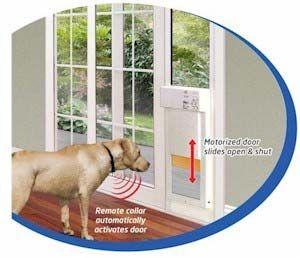 Amazon Com Power Pet Large Electronic Pet Door Px 2 Pet Supplies