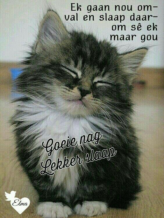 Pin by Estelle on good night sleep tight | Pinterest | Afrikaans