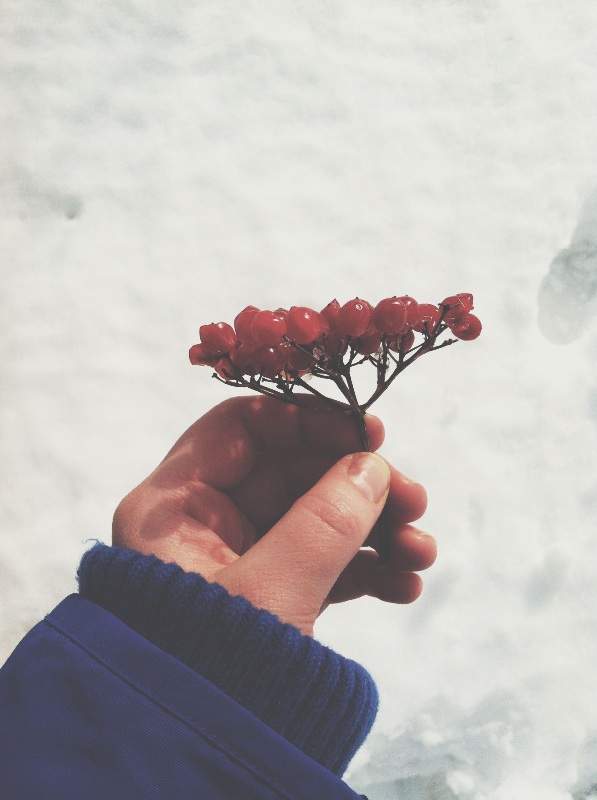berries<<