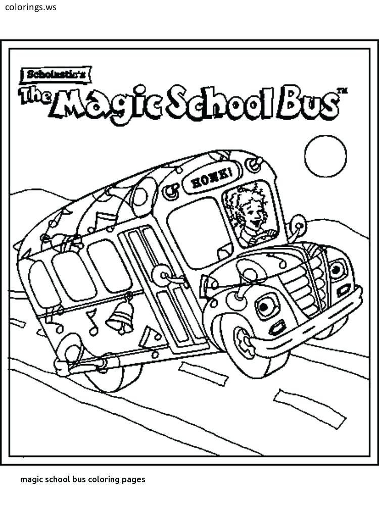 - Activity Book With Fun Easy And Relaxing Coloring Pages The Magic School Bus  Rides Again Coloring