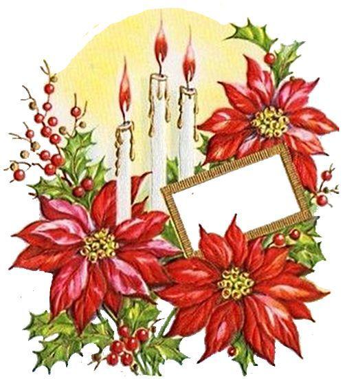 Mail - Carmen Scheinost - Outlook 彩繪 Pinterest Poinsettia