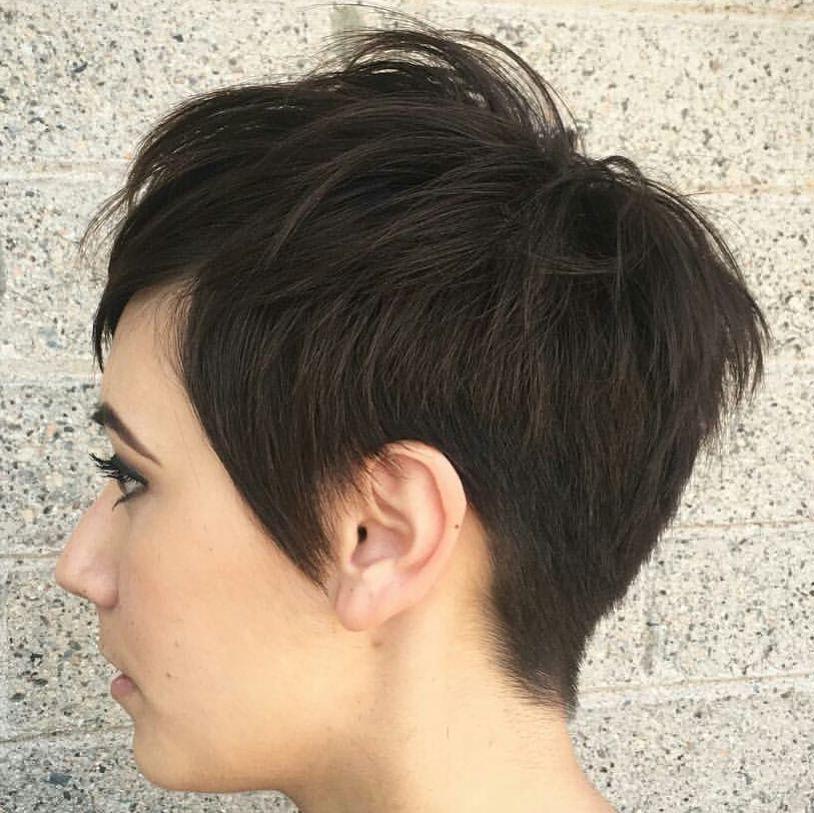 kasdoeshair pixie haircut short shorthair h s p