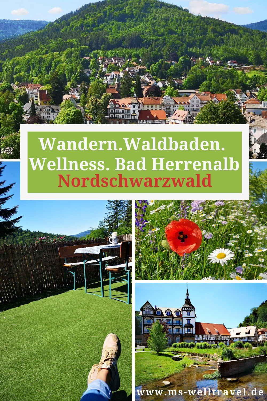 Ausflugsziel Nordschwarzwald Wandern Waldbaden Und Selfness In Bad Herrenalb Ms Welltravel Nordschwarzwald Bad Herrenalb Ausflug