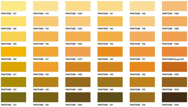 Pantone Color Chart Executive Arel