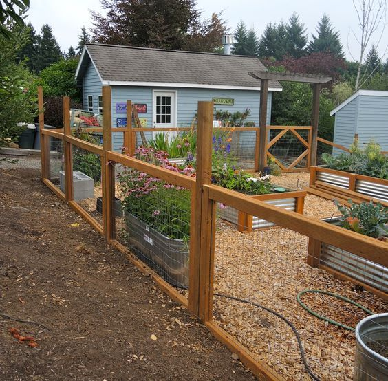Nice This Is Exactly How I Want The Fence Around The Veggie Garden Please ❤ ❤