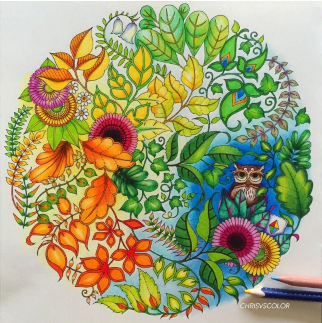 Johanna basford | Раскраски, Цветные карандаши, Рисунки