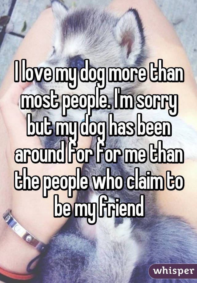 I Love My Dog More Than Most People I M Sorry But My Dog Has Been