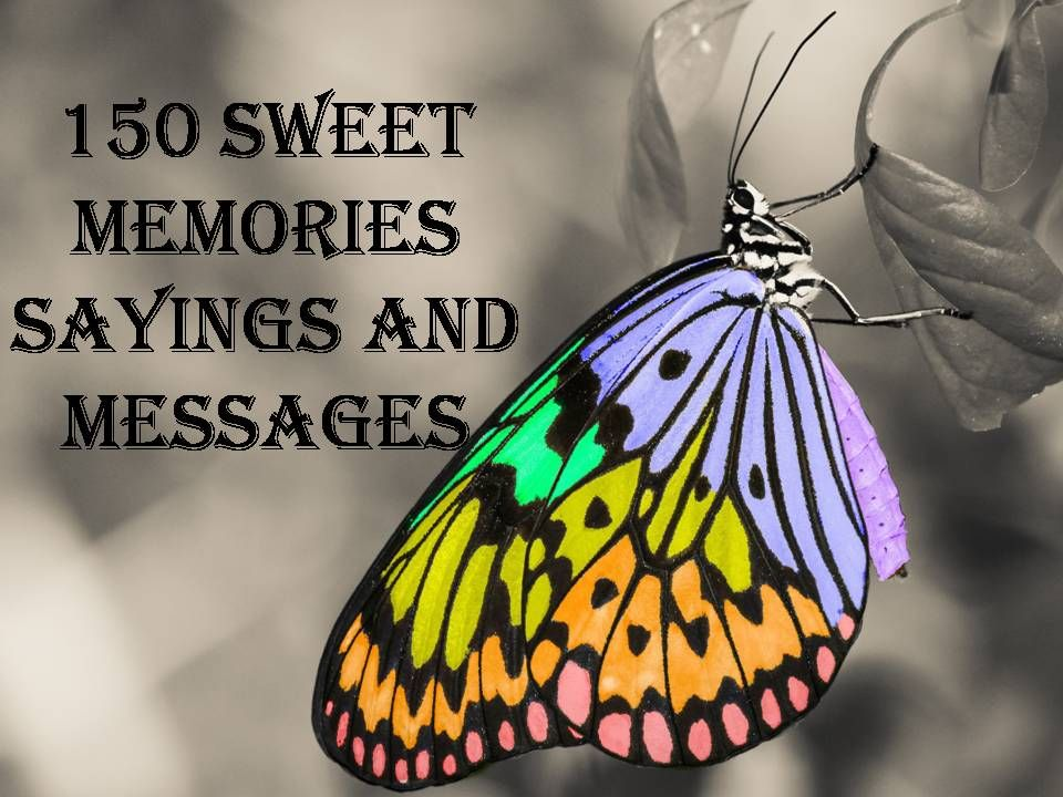 150 Beautiful Sayings And Messages About Sweet Memories Read And Relish These Wonderful Wordings Sweet Memories Memories Memories Quotes