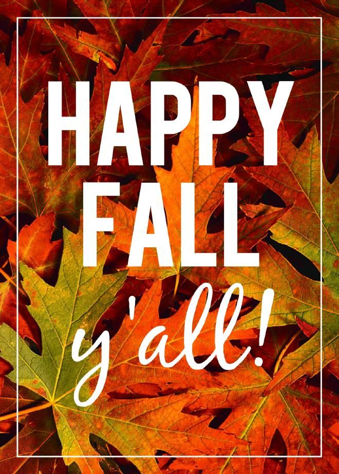 Image result for happy fall break