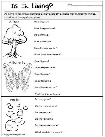 Living or Non Living Worksheet