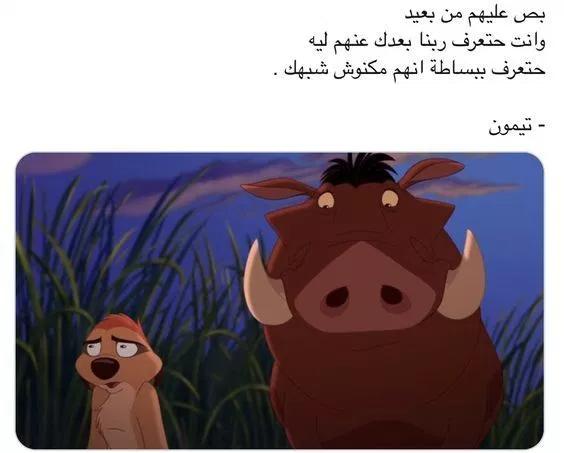 بوستات تيمون وبومبا للفيس بوك صور تيمون وبومبا مكتوب عليها بوستات فوتوجرافر Cartoon Quotes Pretty Quotes Arabic Quotes