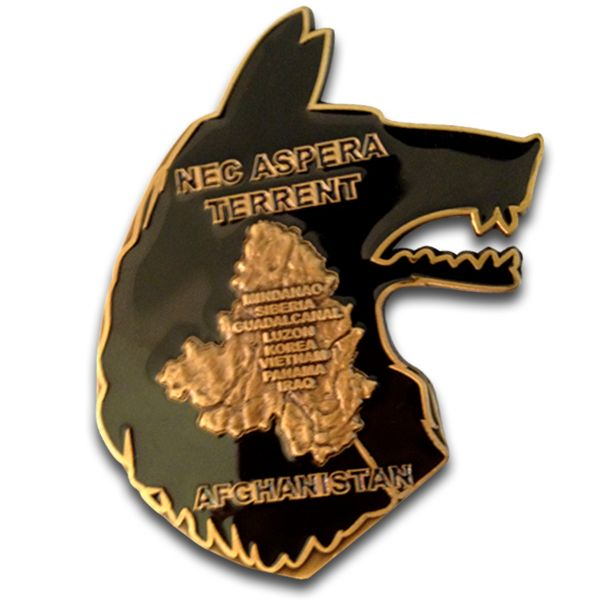 infantry coin