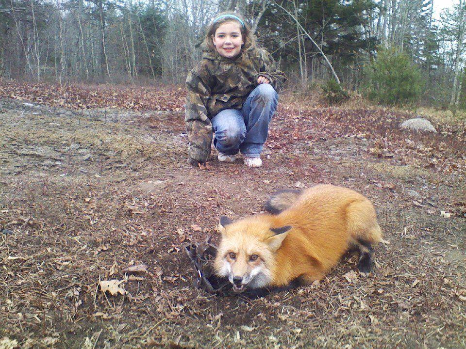 Teaching children to be barbariansBan Fur Globally