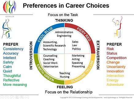 Insights Discovery Career Choices Insights Discovery Career Advice Self Development