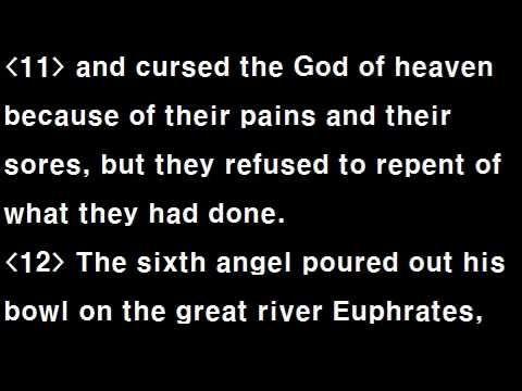 niv audio bible dramatized revelation