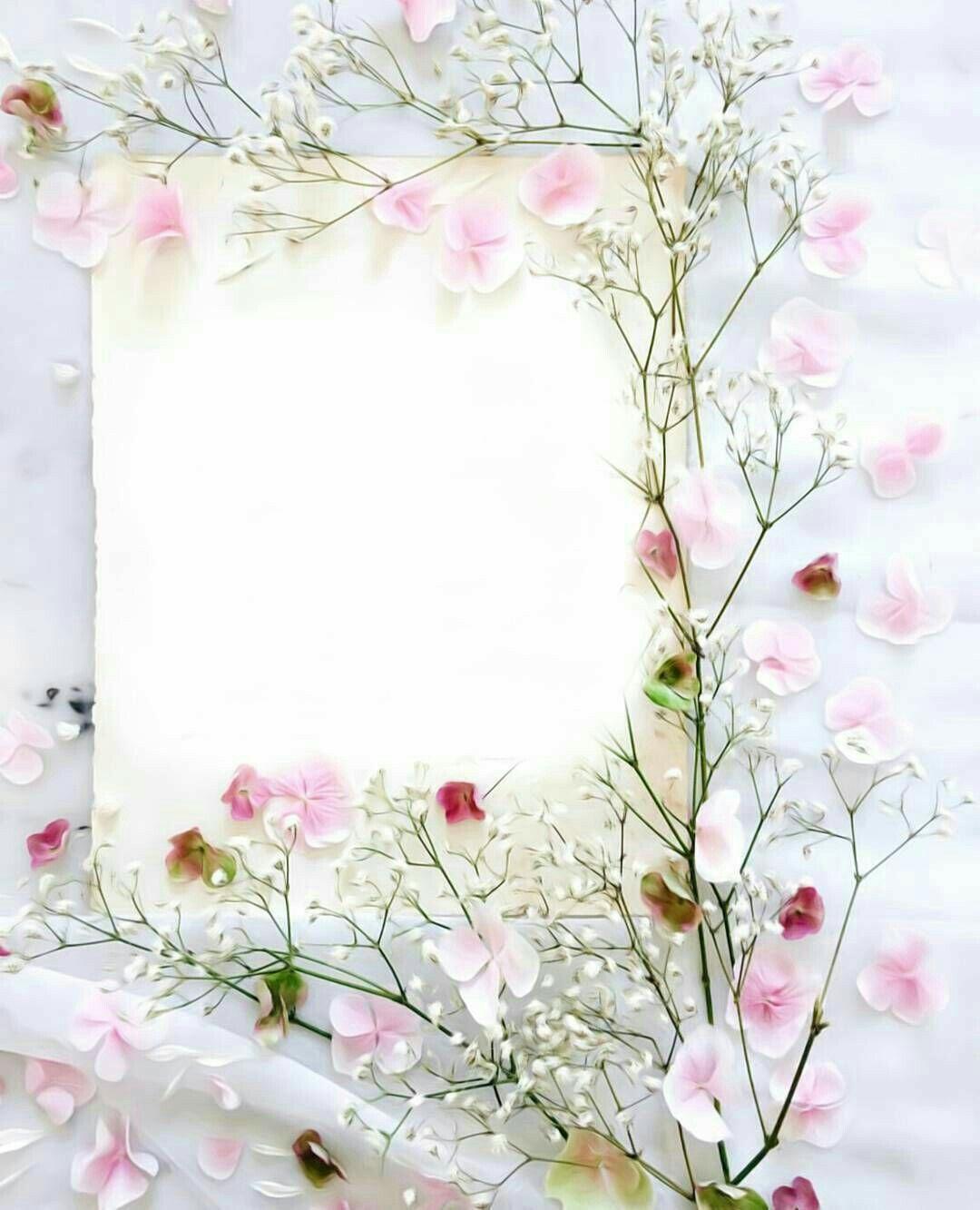 Pin By Bujang Sonang On Mcm2 Ada Flower Background Wallpaper Flower Backgrounds Floral Border Design