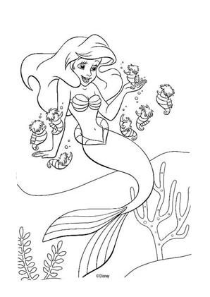 Arielle Die Meerjungfrau Ausmalbilder Ausmalbilder Malvorlage Prinzessin Ausmalbilder Arielle