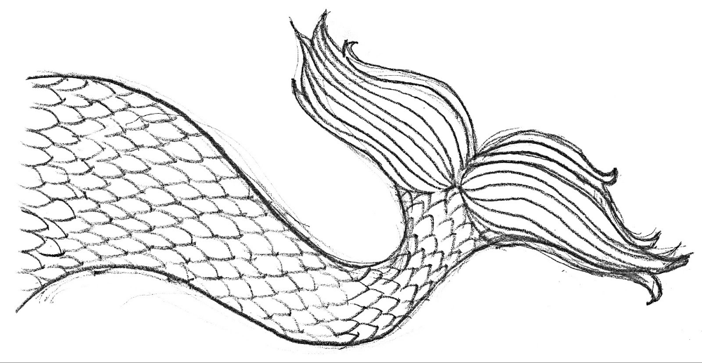 Mermaid Tail Coloring Page | Coloring pages, Mermaid tail ...