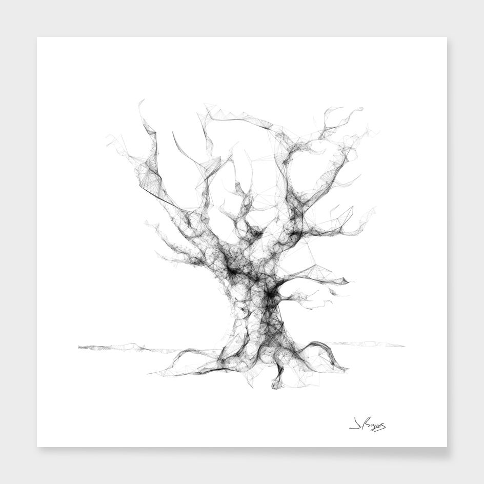 """Line Tree 02"", Limited Edition Fine Art Print by Jordan Rogers - From $29.00 - Curioos"
