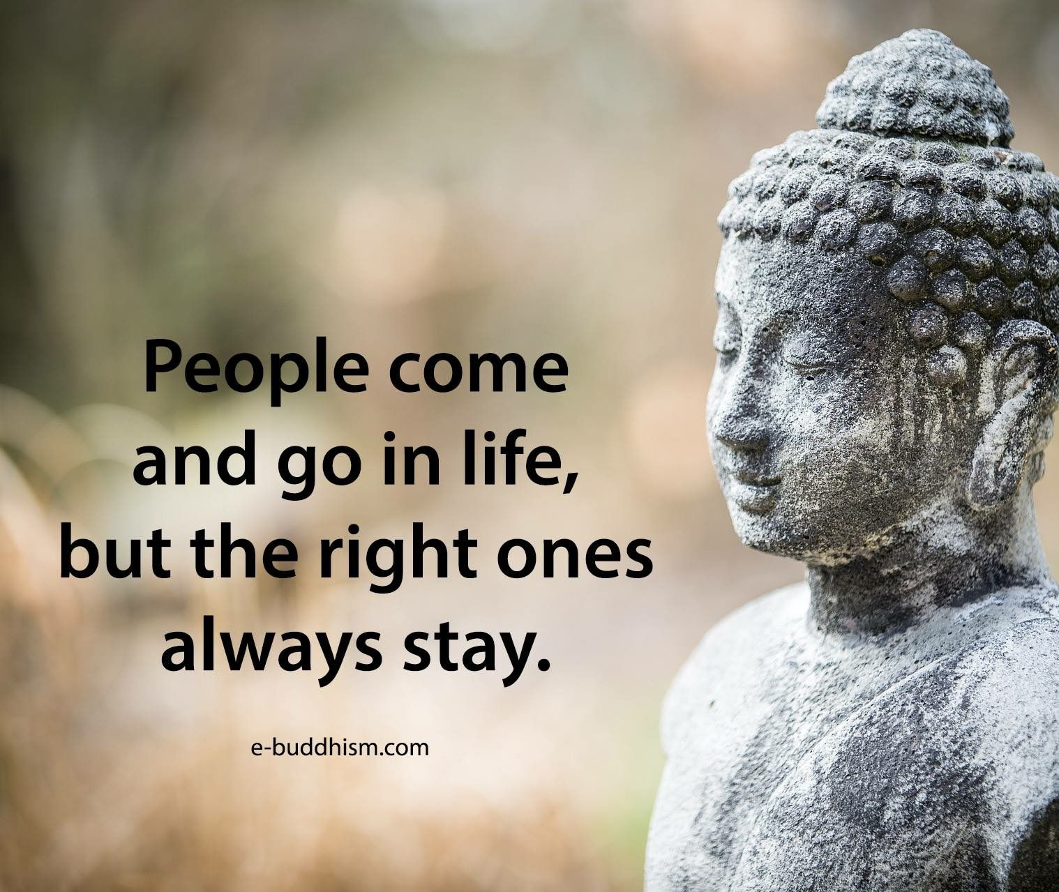 Pin By Rita On Buddha Buddha Quote Sayings Positive Quotes