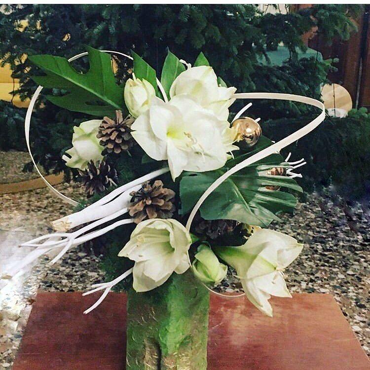 Natale si avvicina !!! #xmasiscoming #quantomancaanatale #amaryllis #mitsumata #... #amaryllis #flowerarrangement #flowerdesign #floweroftheday #flowerstagram #mitsumata #monstera