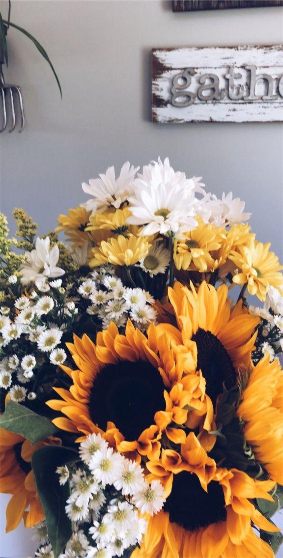 006 VSCO laceywiles sun flower Fleurs du soleil, Fleurs