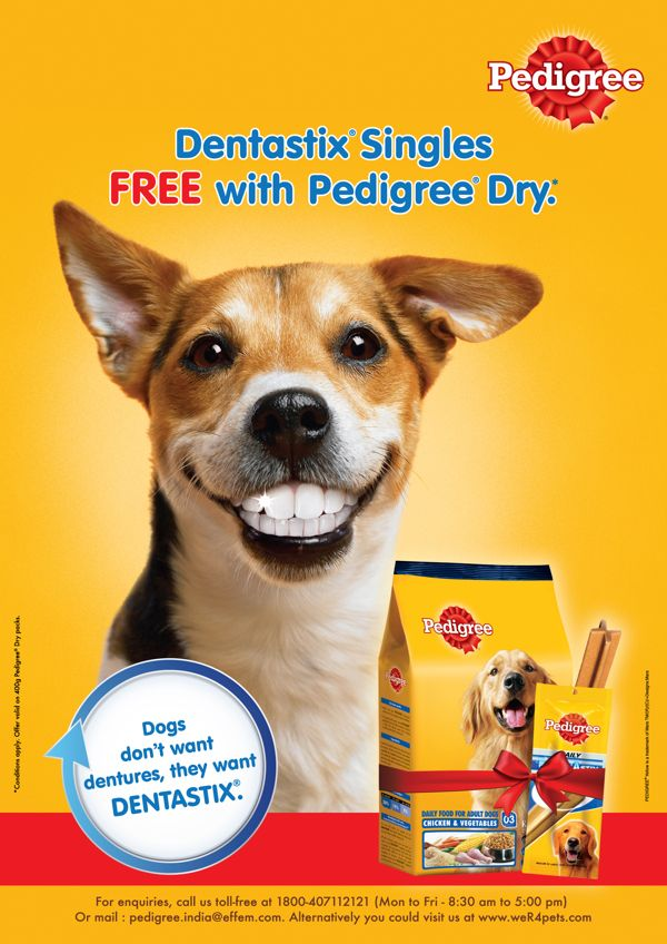 Pedigree Dentastix Summer Campaign Posters By Suresh Babu Via Behance
